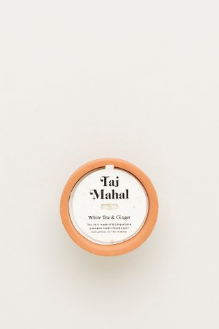 Pass It On Taj Mahal